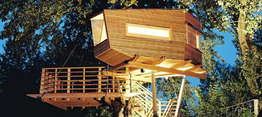 Baumraum - Cool Tree House